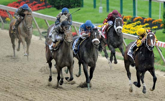 US Racing Live Streaming horse racing online video