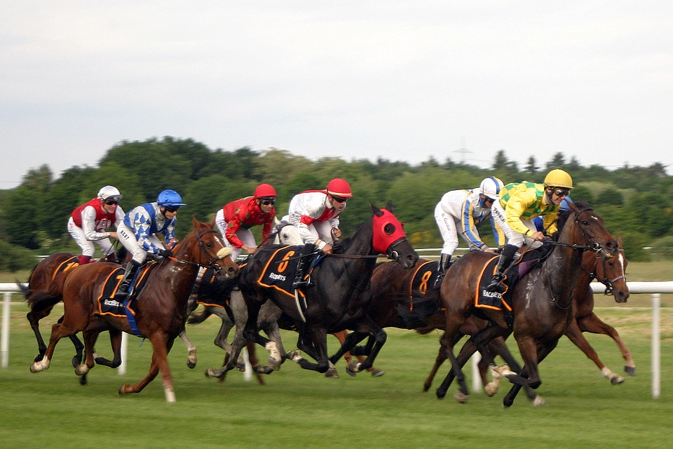 Thumbnail image for Ascot Racing Live Stream