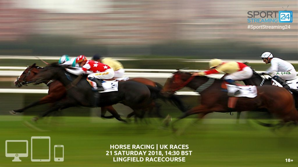 Thumbnail image for Lingfield Racing Live Stream